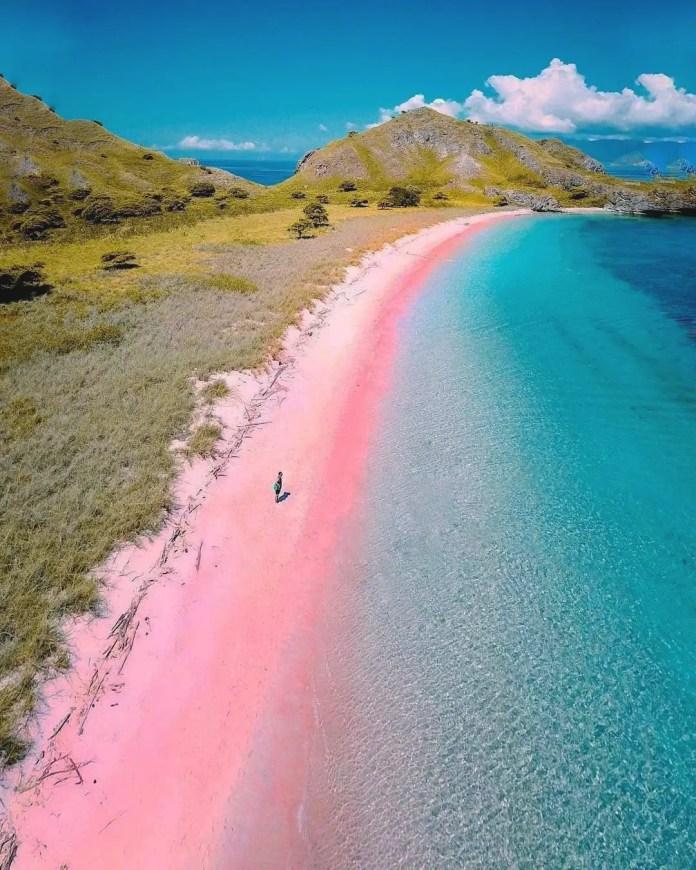 Lombok Pink Beach | Photo Credit- Dreamtours.com.au