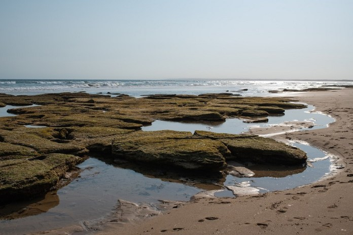 beach rock pools