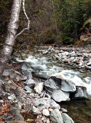 Wildhorse River