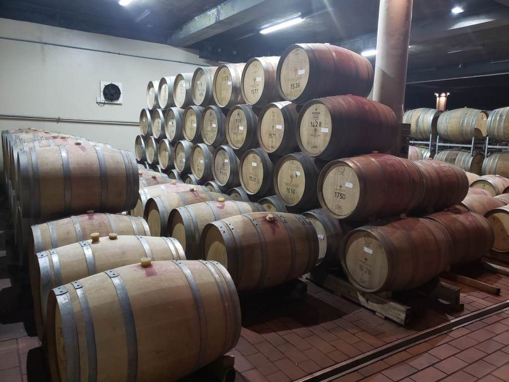 wine casks stacked in cellar