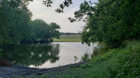 pond surrounded by tress and meadow