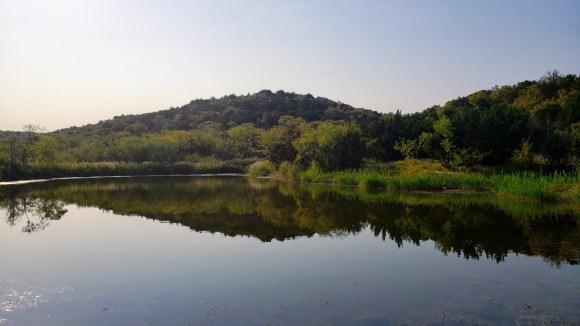 Cattail Pond at Cedar Ridge Preserve