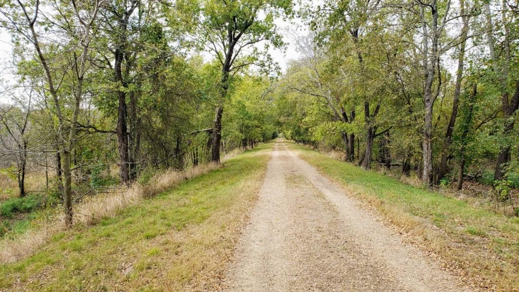Meadow Pond hiking trail