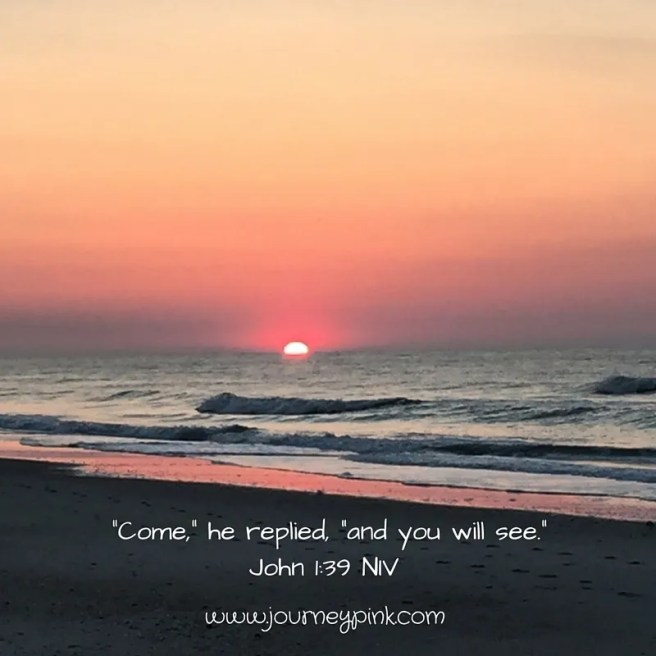 """Come,"" he replied, ""and you will see."" John 1_39 NIV"