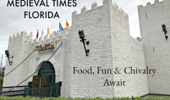 Medieval Times Florida Review: Chivalry, Food and Fun