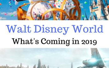 2019 at Walt Disney World- Endless Fun and New Adventures