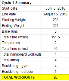 Snapshot of workout summary.