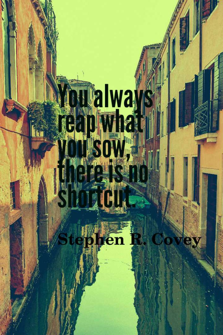 You always reap what you sow, there is no shortcut. Stephen R. Covey