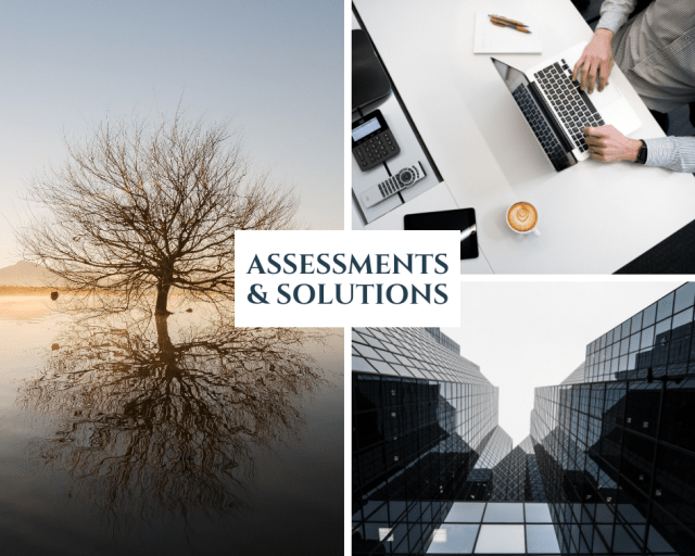 ASSESSMENTS & SOLUTIONS