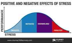 Positive and Negative Effects of Stress (Infographic)