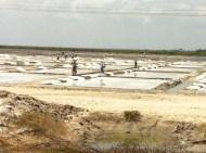 Bay of Bengal Salt Farm