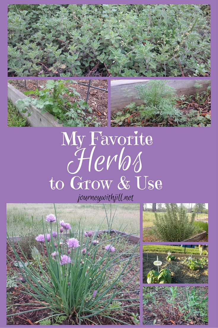 My Favorite Herbs to Grow and Use | Journey with Jill