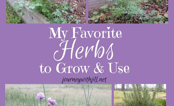 My Favorite Herbs to Grow and Use