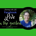 Facebook Live in the Garden