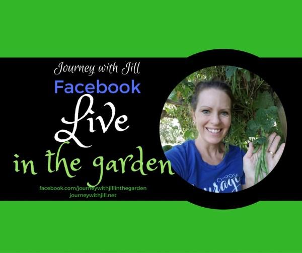 Facebook Live In the Garden