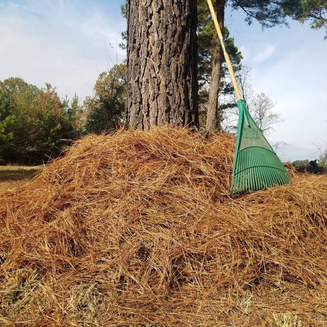 Raking up future mulch for next seasons garden! Ive foundhellip