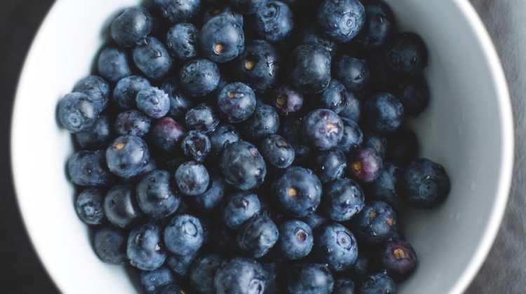 BLUEBERRIES brandon-wilson-52838-unsplash