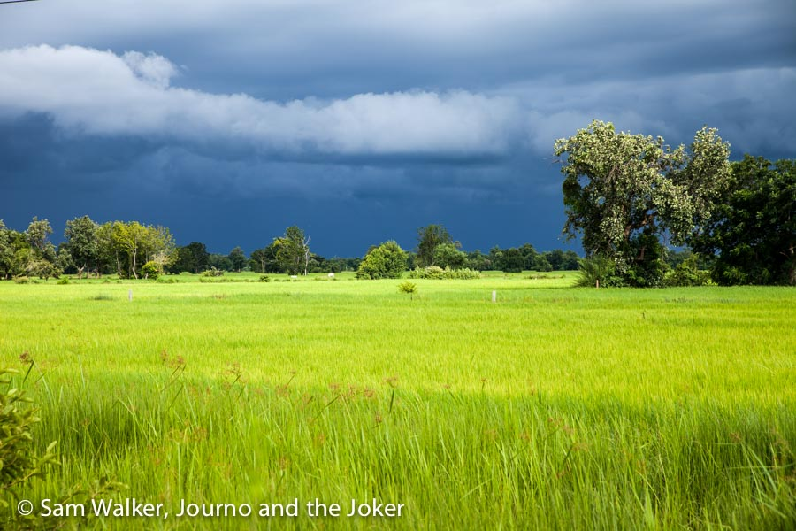Rice fields and rain clouds, Battambang, Cambodia