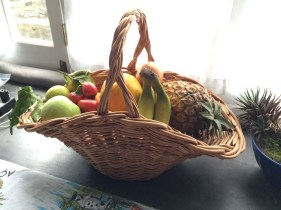 Fruit basket left by the owner.