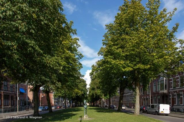 Singels Groningen-7827-2