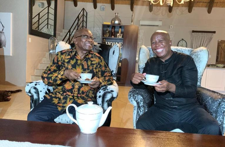 How Zuma and Malema tea meeting ended
