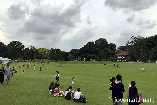 Istana grounds