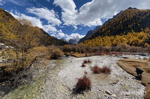 IMG_1615-20191023-daocheng-yading-nature-reserve-sichuan