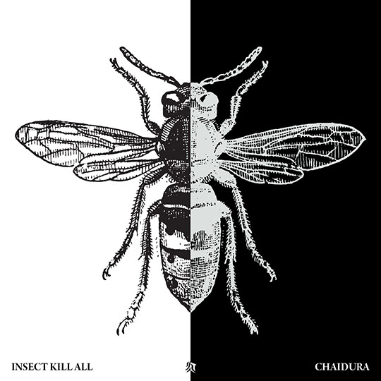 Chaidura Insect Kill All Album Art