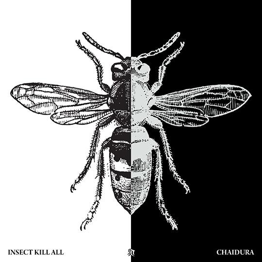 Chaidura Insect Kill All Album Art