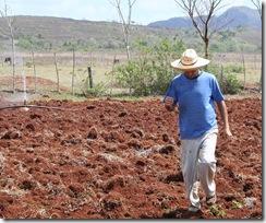 agricultura_campesino_cubano
