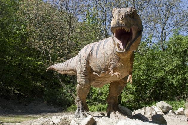 Dinosaurios-que-tan-rapido-corrian-1