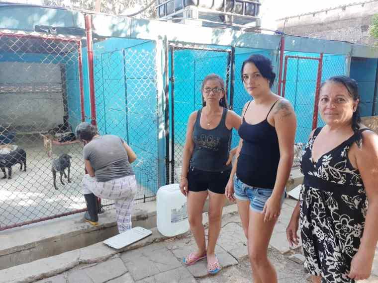 De izquierda a derecha: Marlén arregla la puerta de un cubículo, Linieska, Arielys y Deysi