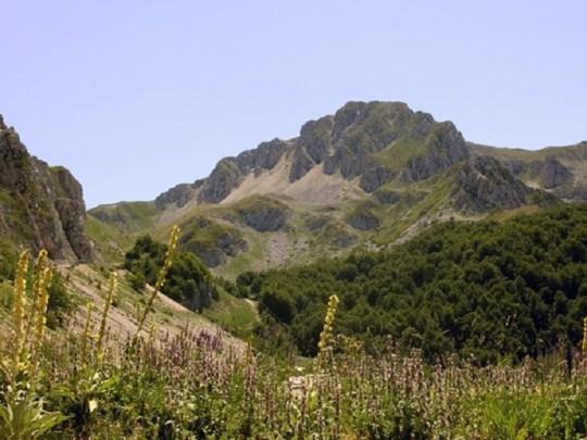 Mount Terminillo in summer.
