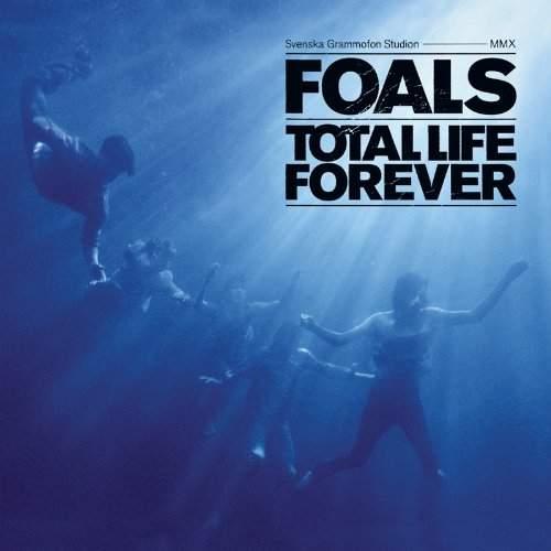 foals_