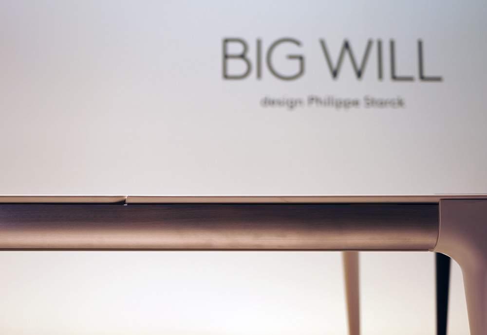 BIGWILL-DSC07919