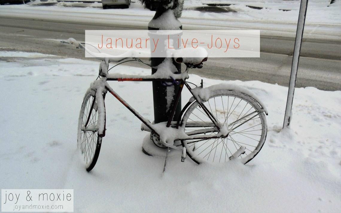 snowbike12.24.15jm pm2