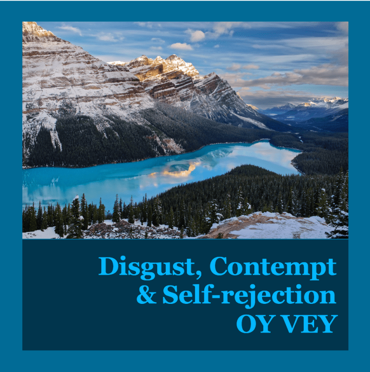 Disgust, Contempt and Self-rejection OY VEY Healing after narcissistic abuse