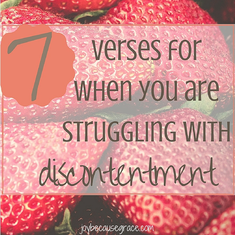 7 Verses for when you are Struggling with Discontentment