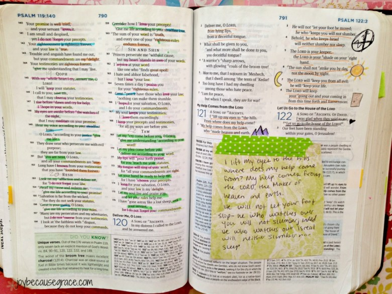 Bible Journal 5