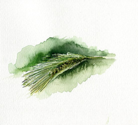 grass spike