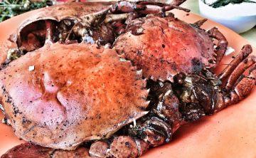 [新加坡-美食餐廳]必吃黑胡椒蟹名店『永成餐室』Eng Seng Restaurant 無菜單平價海鮮餐廳推薦 ♥ 小Connie愛夢遊。遊記食記
