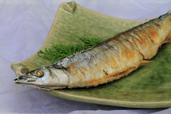 sanmasioyaki2