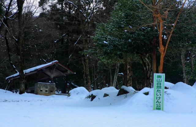 okunosawa8-2048f
