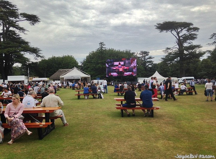 At Goodwood Festival of Speed 2015