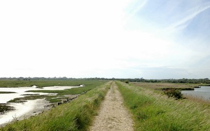 Pagham Harbour nature reserve in West Sussex, England