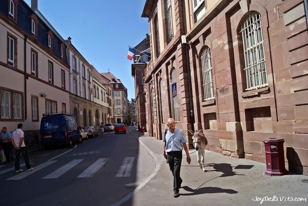 2 hours in Strasbourg JoyDellaVita Travelblog