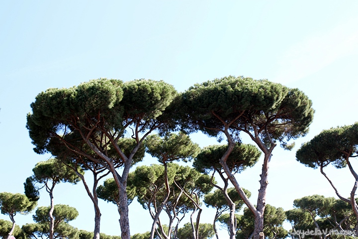 Villa Borghese Garden in the Heart of Rome