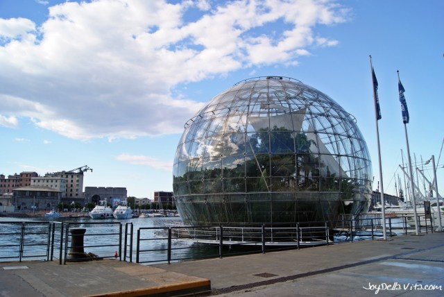 Biosphere at the old harbor