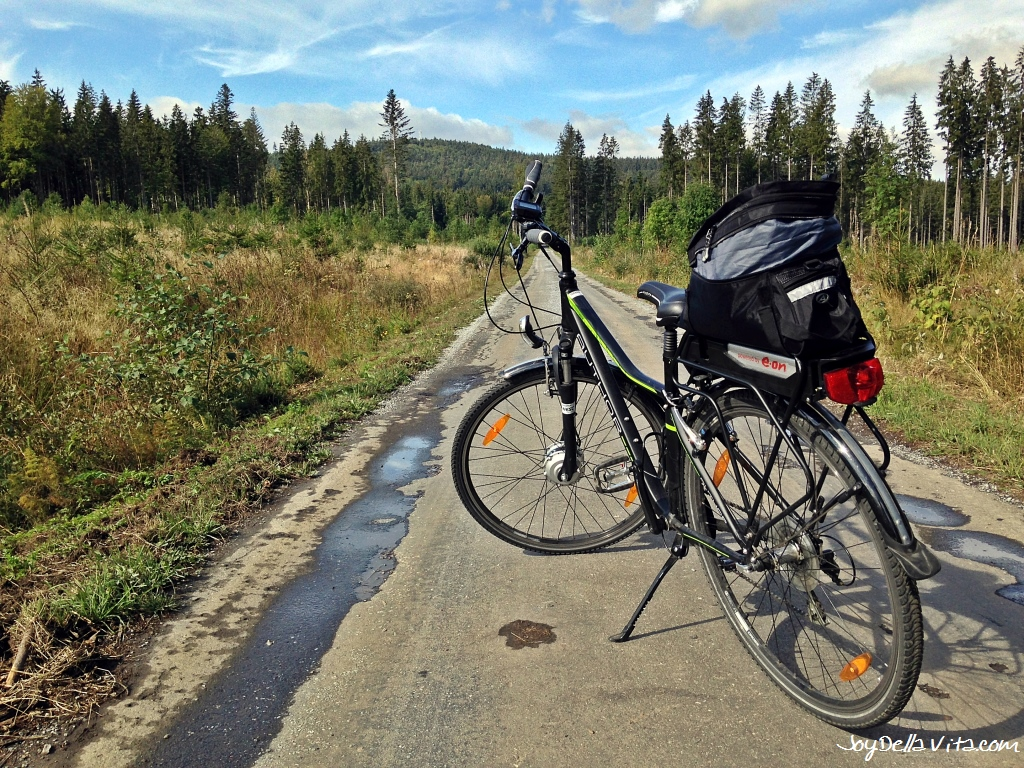 Lipno Dam Bike Tour with a Rental Electric Bike