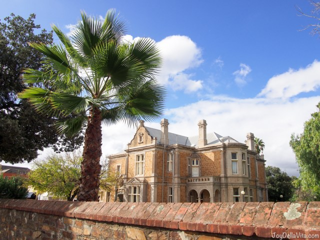 Houses with Palm Trees in Adelaide